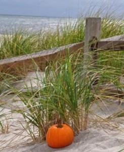 LHH, fall beach